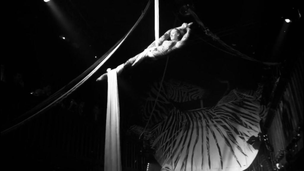 Elodie Lobjois, Tissu aérien, Zebre de Belleville